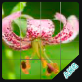 Slide Puzzles Beautiful Flowers icon