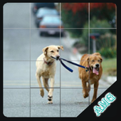 Slide Puzzles Dogs Friends Lovely icon