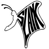 Tebak Judul Lagu Slank icon