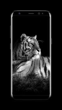 Tiger - AMOLED Wallpaper for lock screen screenshot 4