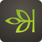 Ancestry icon