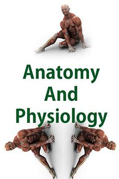 Human Anatomy and Physiology poster