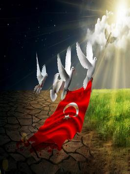 Turkey Flag Wallpapers HD poster