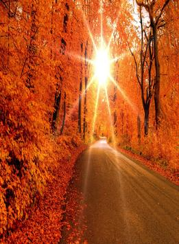 Autumn Wallpapers HD apk screenshot