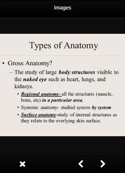 Anatomy And Physiology Definition APK Download - Free Education APP ...