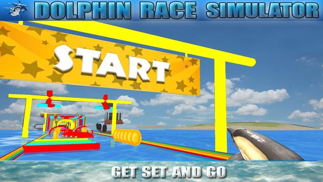 Dolphin Race Simulator poster