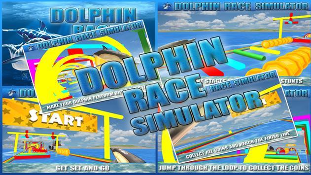Dolphin Race Simulator screenshot 19