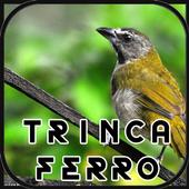 Canto de Trinca Ferro New icon