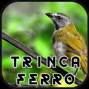 Canto de Trinca Ferro New poster