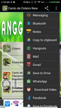 Canto de Tico Tico HD apk screenshot