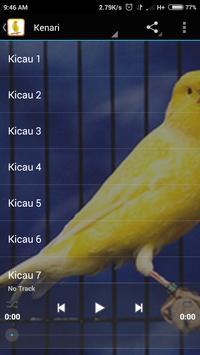 Kicau Master Burung Kenari apk screenshot