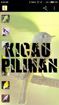 Kicau Master Burung Poksay poster