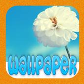HD Flower Wallpaper icon