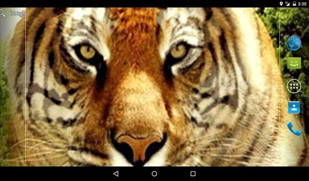 Tiger Waves Live Wallpaper screenshot 3