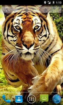 Tiger Waves Live Wallpaper poster