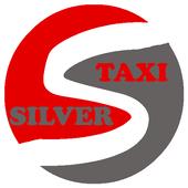 Silver Kovin icon