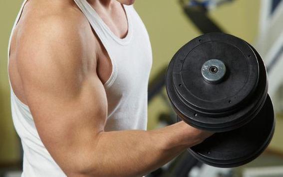 Gym Exercises Plan poster