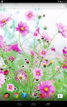 Sweet Flowers Live Wallpaper apk screenshot