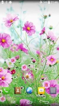 Sweet Flowers Live Wallpaper poster