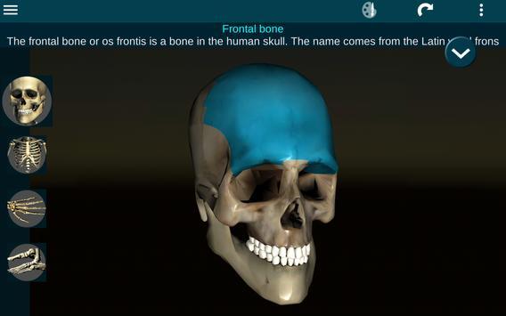 Sistema Oseo en 3D (anatomía) Descarga APK - Gratis Medicina ...