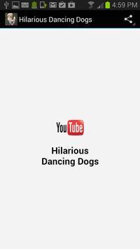 Hilarious Dancing Dogs poster