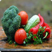 Becoming Vegetarian Course icon