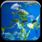 Underwater World Wallpaper icon
