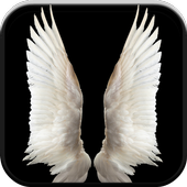 New HD Angel Wallpapers icon