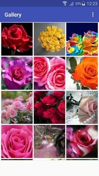 New Beautiful HD Roses Wallpapers poster