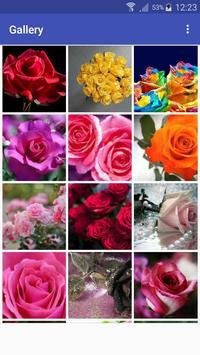 New Beautiful HD Roses Wallpapers screenshot 4