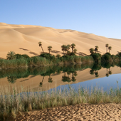 North Africa Wallpaper Travel icon