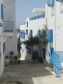 Tunisia Wallpaper Travel poster