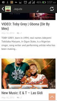 Nigerian Music screenshot 6