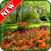 Spring Wallpapers icon