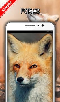 Fox screenshot 2