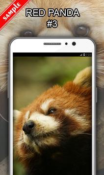 Red Panda screenshot 3