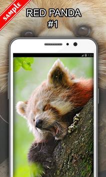 Red Panda screenshot 1