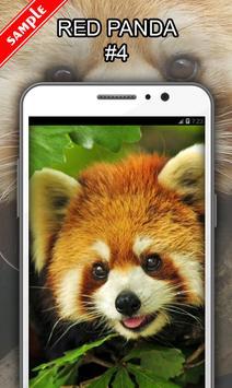 Red Panda screenshot 4