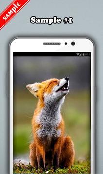 Fox Wallpaper screenshot 1