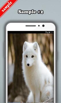 Fox Wallpaper screenshot 2