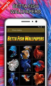 Betta Fish Wallpapers poster