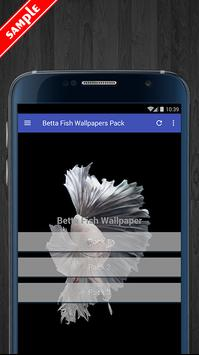 Betta Fish Wallpaper HD Pack poster