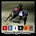 Greyhound Race Nights