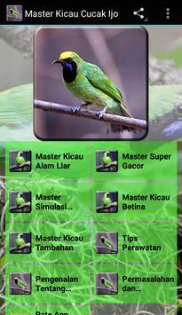 Master Kicau Cucak Ijo poster