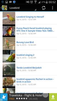 Birds chirping Video Master for Android - APK Download