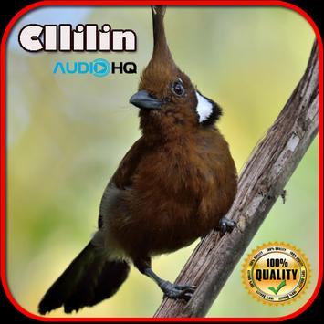 Clilin Super Gacor apk screenshot