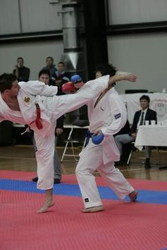 Karate screenshot 2