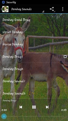 Donkey Sounds for Android - APK Download