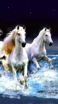 Horse Wallpapers screenshot 5