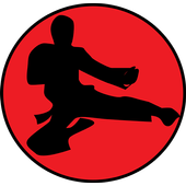 Learn Kung Fu Training icon